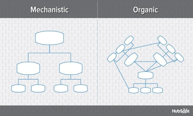 9 Types of Organizational Structure Every Company Should Consider