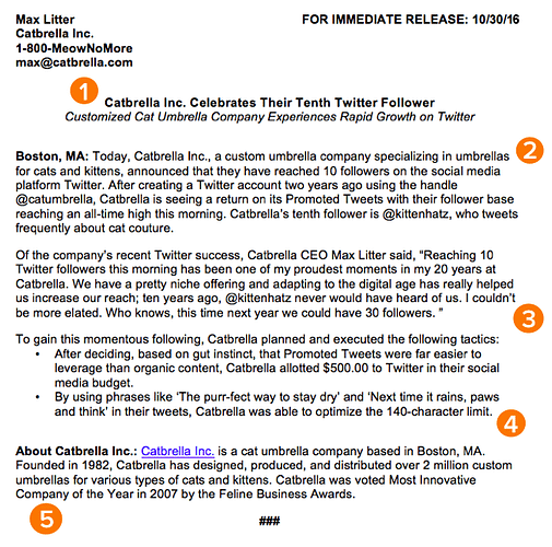 How to Write a Press Release [Free Press Release Template + Examples]